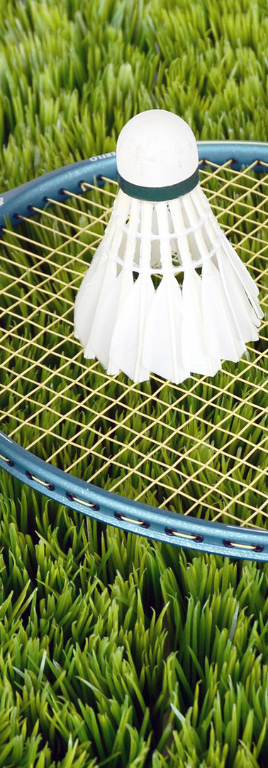 Équipement badminton