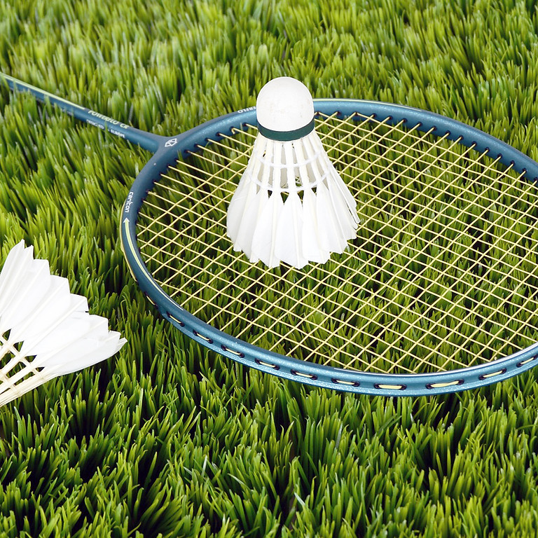 Badminton (ab 1. Klasse)