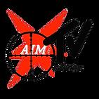 aim copy-4.png
