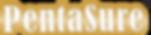 pentasure logo transparent.png