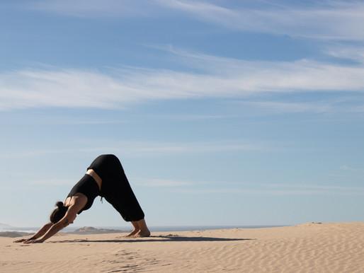 What's Vinyasa Yoga?