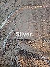 Silver_edited.jpg