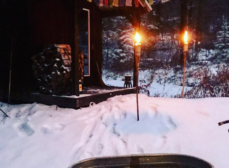 JANUARY 2020 UPDATES: The Iceman Cometh - The Wim Hof Method