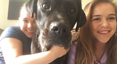 Carer supporting young adult at home who is hugging her dog
