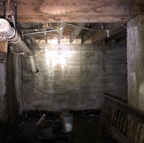 Raw sewage, mold and termite damage