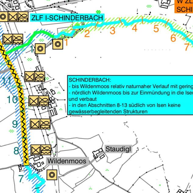 1.Schinderbach.Wildenmoos.jpg
