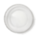 Charger Plate_04.png