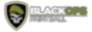 Black Ops Paintball logo3_glow50.png