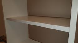 Bespoke bookcase Painting