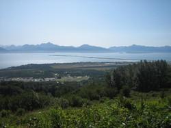 Wynn Nature Center Homer Alaska view