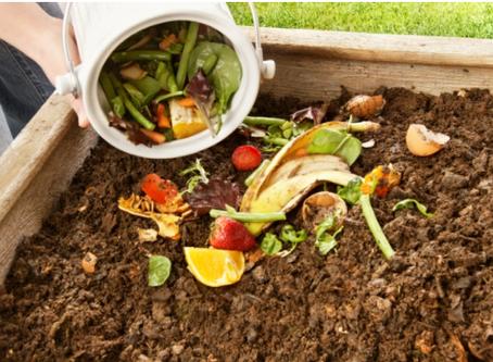 Y… ¿qué hacemos con los residuos orgánicos? Devolverlos a donde pertenecen, la tierra.