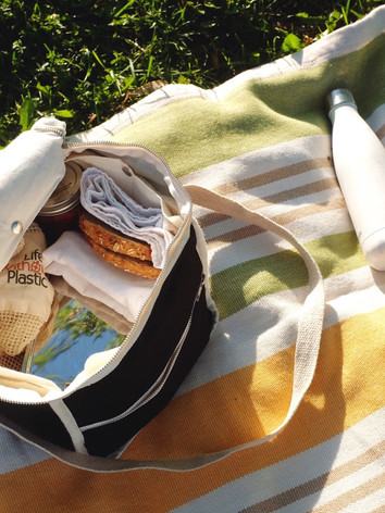 Picnic/Lunch Bag for Sale!