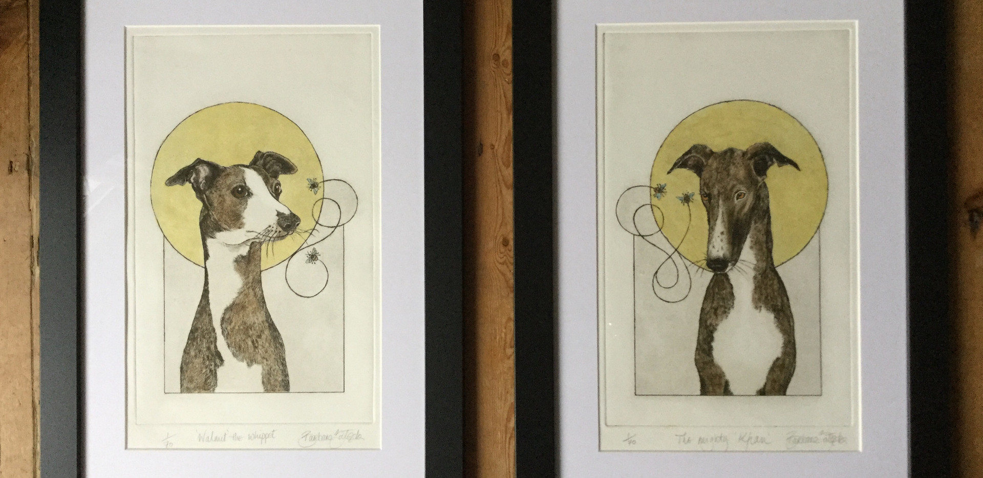Walnut the whippet and The mighty Khan £140 each