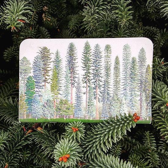 NW Native Conifer notebook $3.99 ea per 10 pack