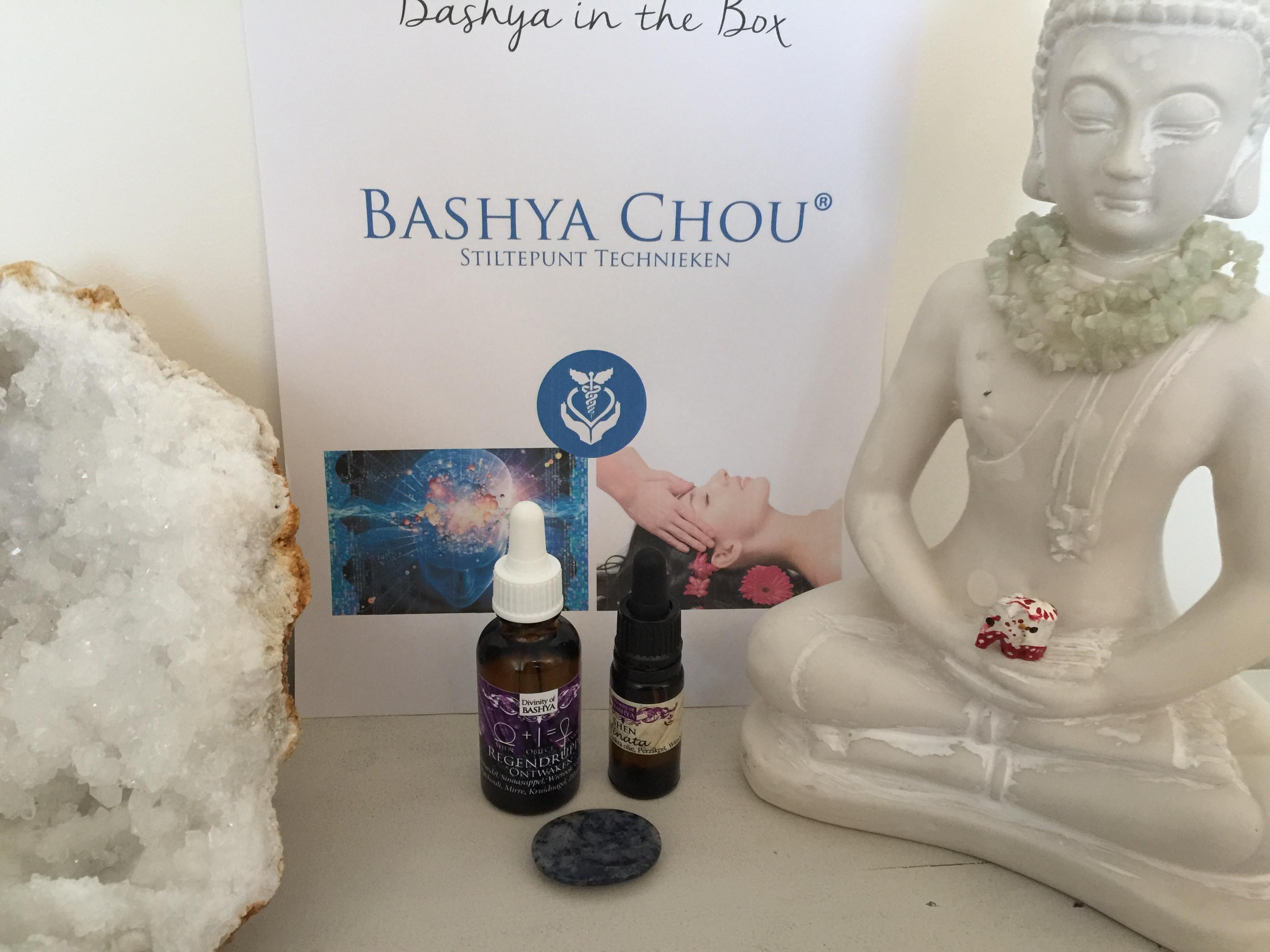 Chinflex (voet) & Bashya Chou (hoofd)