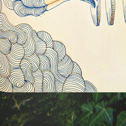 Bottom-Sketch1.jpg