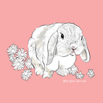 Lop Ear Bunny illustration surrounded by flowers by Karen Little  of Sketch-Views