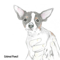 Chihuahua being held illustration by Karen Little  of Sketch-Views