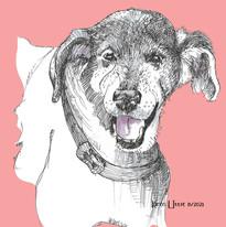 Black pup named Gunther illustrated by Karen Little  of Sketch-Views
