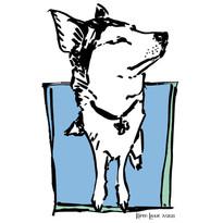 A Huskie named Sigi doodled by Karen Little  of Sketch-Views