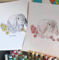 Lop Ear Bunnies illustrated by Karen Little  of Sketch-Views