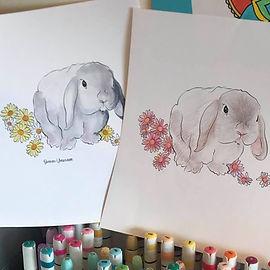 Lop-ear-bunny-ver-2-and-3.jpg