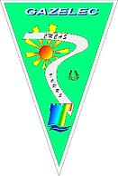 logo-gazelec.png