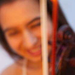 Spotlight Violin 6
