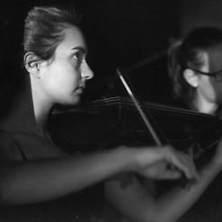 Spotlight Violin 12