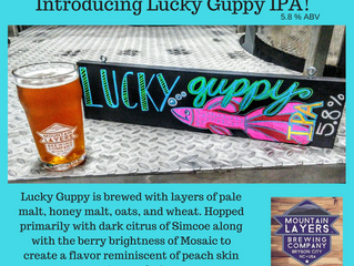Introducing Lucky Guppy IPA