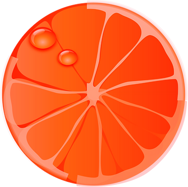 orange-159268_1280_edited_edited.png