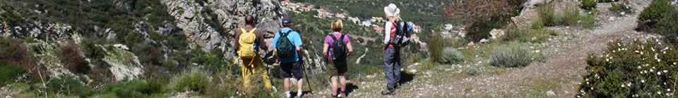 mountain-walk-wide-960.jpg