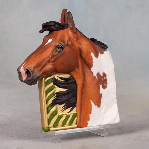 Saddlebred Cubie
