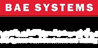 logo SDT.png