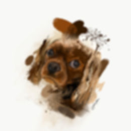 Dog portrait abstract art