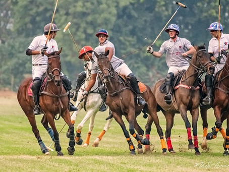 DISCIPLINES EXPLAINED: POLO