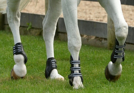 ALL ABOUT HORSE BOOTS