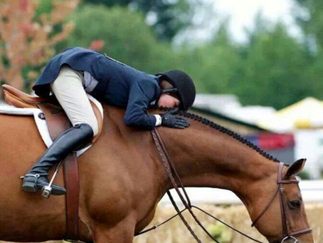 FINDING YOUR DREAM HORSE