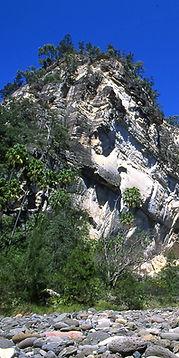 Cliff and creek, Carnarvon Gorge.
