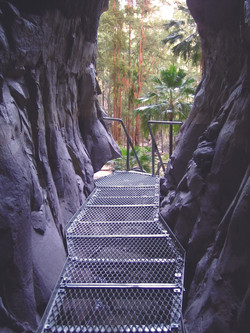 Amphitheatre, Carnarvon Gorge