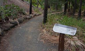 Baloon Cave Walking Track, Carnarvon Gorge.