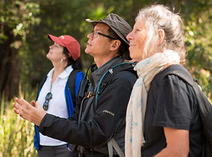 Australian Nature Guide Simon Ling leads a tour in Carnarvon Gorge.