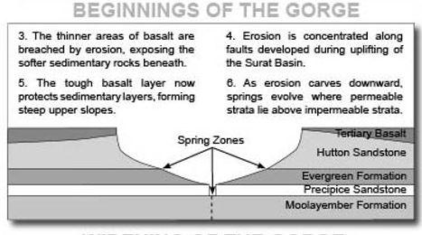 Cutting of Carnarvon Gorge.