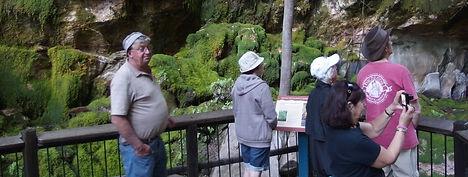 Moss Garden, Carnarvon Gorge.