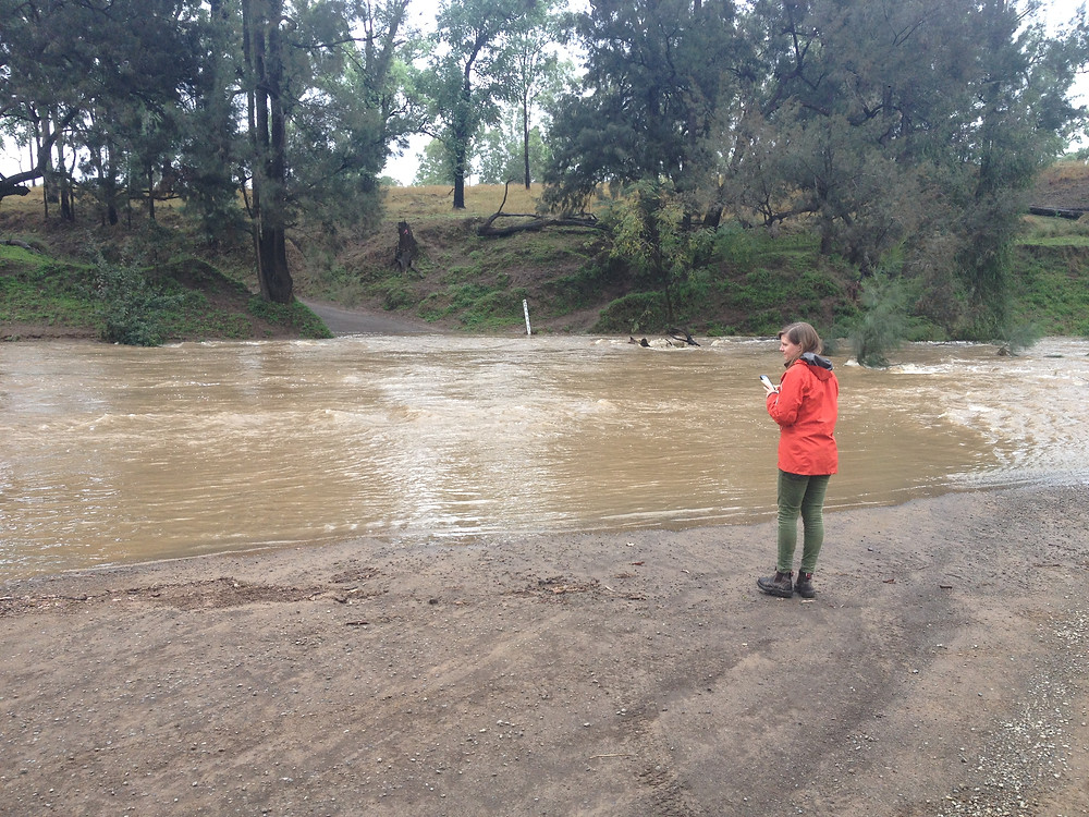 Checking out Carnarvon Creek, Ingelara Crossing.