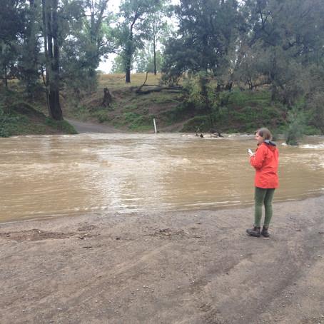 Carnarvon Creek, Ingelara Crossing.
