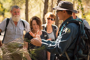 Australian Nature Guides on tour in Carnarvon Gorge