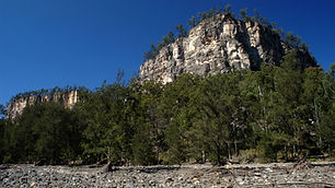 Majestic sandstone cliffs in Carnarvon Gorge