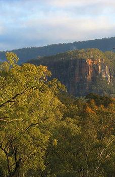 Boolimba Bluff from Mickey's Ridge, Carnarvon Gorge.
