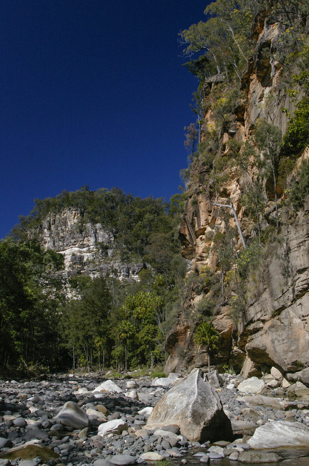 Upper Carnarvon Gorge